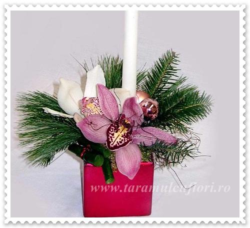 Aranjamente Craciun din brad-orhidee-globuri-lumanari 029